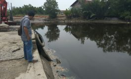 Aktivitas Cpo Ilegal : Oknum Tidak Bertanggungjawab Diduga Cemari Sungai Dumai