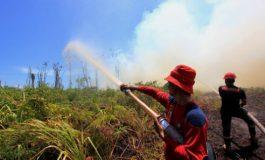 BPBD Dumai Optimis Lakukan Pemantauan Sekaligus Pemadaman Api Karlahut