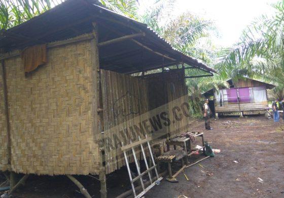 Menyingkap Gubuk Tempat Latihan Terduga Teroris Kelompok Pak Ngah
